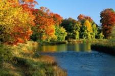 Аюрведа для женщин — питание доша вата осенью