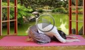 Развитие женственности и асаны йоги для начинающих поза Баласана Развитие женственности